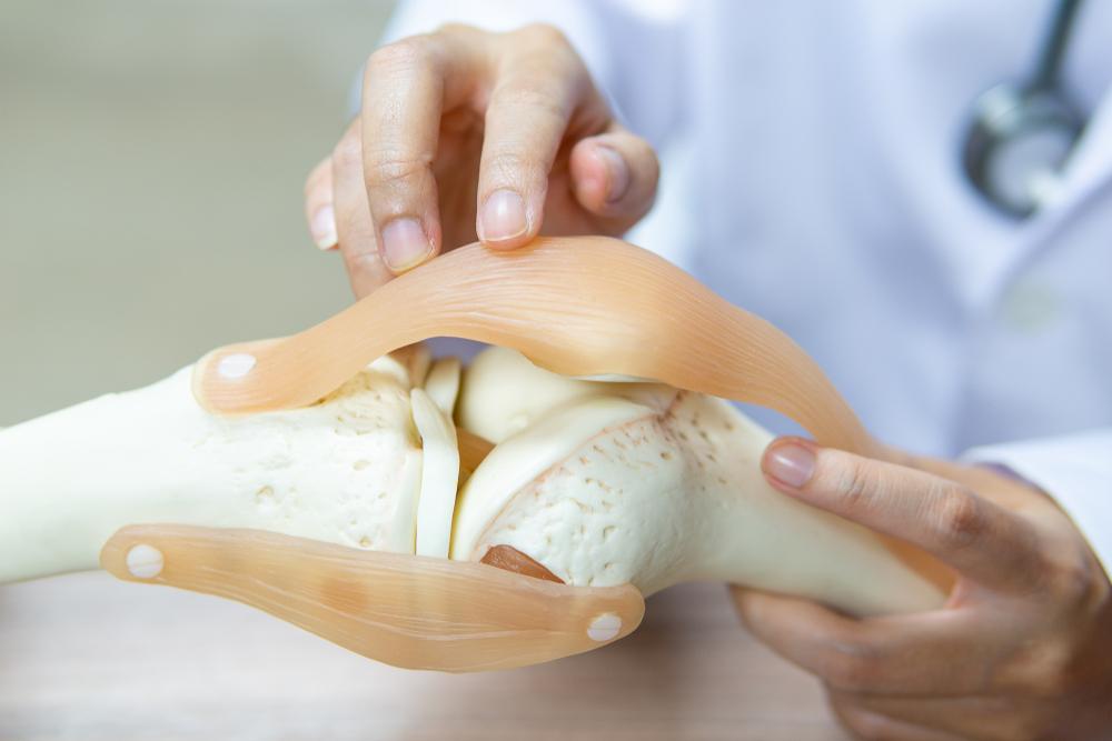 knie orthopädie